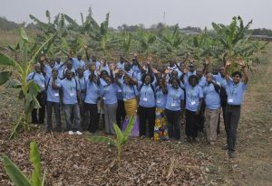 Picture of Alliance members during a tour of IITA banana fields