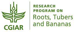 CGIAR Research Program on Roots Tubers and Bananas green logo_260_opt