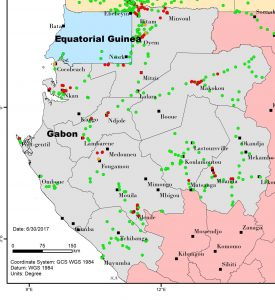 Fig 1. Map of BBTD distribution in Gabon as per the surveys conducted in 2015-16 (Source: IITA)