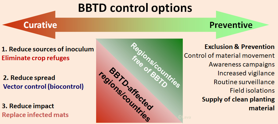 Fig 2. Preventive and curative control options for mitigating BBTD impact in Africa