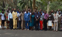 """A training workshop on """"Banana Bunchy Top Disease (BBTD) diagnosis, surveillance and emergency response"""" was held 14 to 16 January 2019 at IITA, Ibadan, Nigeria. The workshop, sponsored by the CGIAR Research Program on Roots, Tubers and Bananas (CRP-RTB), was attended by 20 participants from Togo – Direction de la Protection des Végétaux (DPV), Institut de Conseil et d'Appui Technique (ICAT), and Université de Kara; Ghana – Plant Protection and Regulatory Services Directorate (PPRSD)]; and Nigeria – Nigerian Agricultural Quarantine Services (NAQS), National Horticultural Research Institute (NIHORT), the National Agricultural Seed Council (NASC), and ECOWAS.  The purpose of the workshop was to strengthen national capacity in disease surveillance and diagnosis and implement an emergency response to eliminate infected plants. The course offered hands-on training in the application of on-field diagnostics for the detection of BBTV using methods such as LAMP (Loop-mediated Isothermal Amplification) and RPA (Recombinase Polymerase Amplification) and using the Crop Disease Surveillance (CDS) mobile app for real-time surveillance and reporting.  BBTD is a devastating viral disease of plantain and banana caused by BBTV transmitted by the banana aphid (Pentalonia nigronervosa). """"BBTD outbreak in West Africa was first recognized in 2010 in Benin and 2011 in Nigeria,"""" said Lava Kumar, IITA virologist and Head of IITA's Germplasm Health Unit, and organizer of the workshop. Various actions by the national programs and IITA have resulted in preventing disease expansion in these countries, he added. In September 2018, BBTV was detected for the first time in Togo, and the emergency response action implemented jointly by DPV-Togo and IITA had resulted in eradicating the disease detected in three locations in the country. """"Inadvertent distribution of BBTV-infected planting material has led to widespread occurrence of the virus in sub-Saharan Africa and the same factor may have led to """